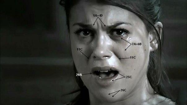 Картинки по запросу Система кодирования лицевых движений